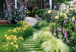 花园设计如何搭配植物?