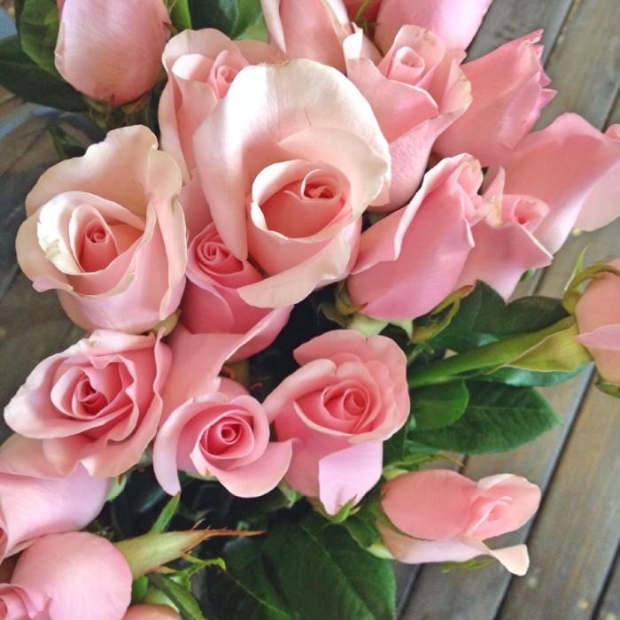 玫瑰的花语