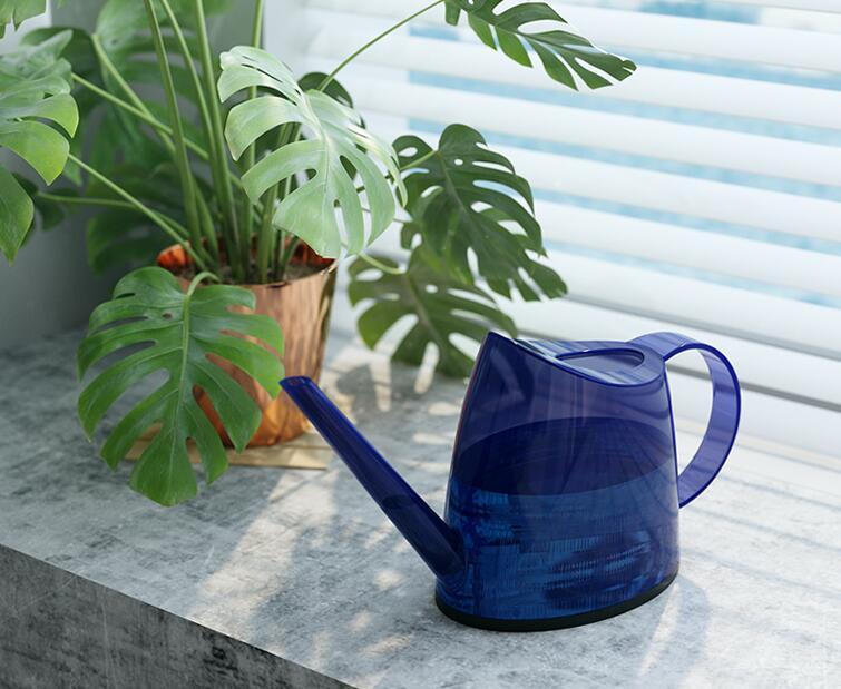 盆栽花卉浇水方法有哪些要点