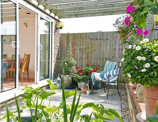 10种方法教你治阳台花园飞虫