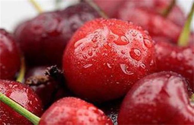 车厘子和樱桃有什么区别