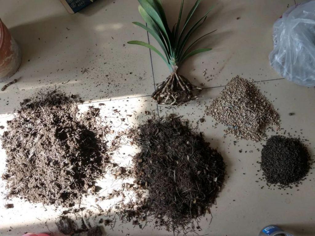 花卉换盆以后的旧土还可以用吗?还能继续种花吗?