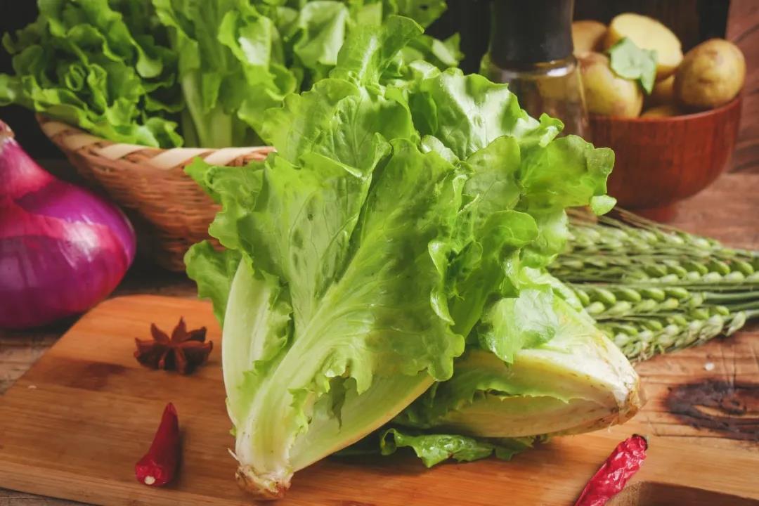 哪些蔬菜可以水培?