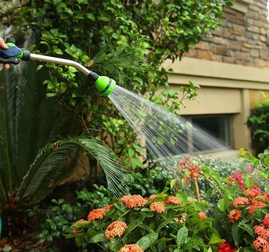 花卉在不同的生长时期要怎么浇水?