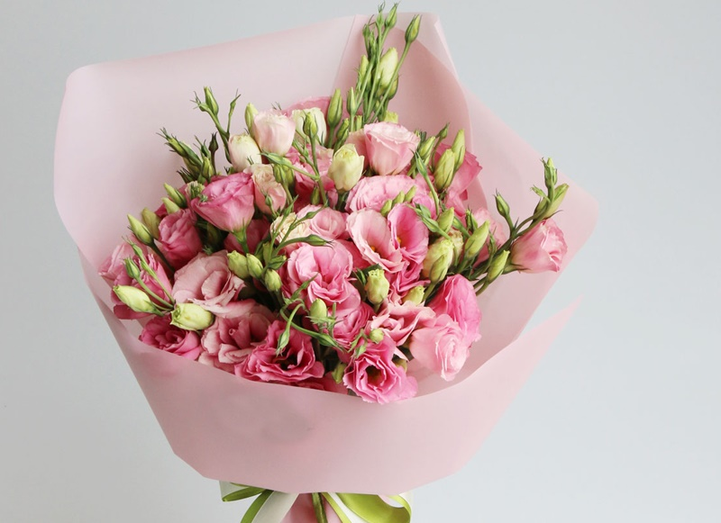 粉色桔梗花的花语