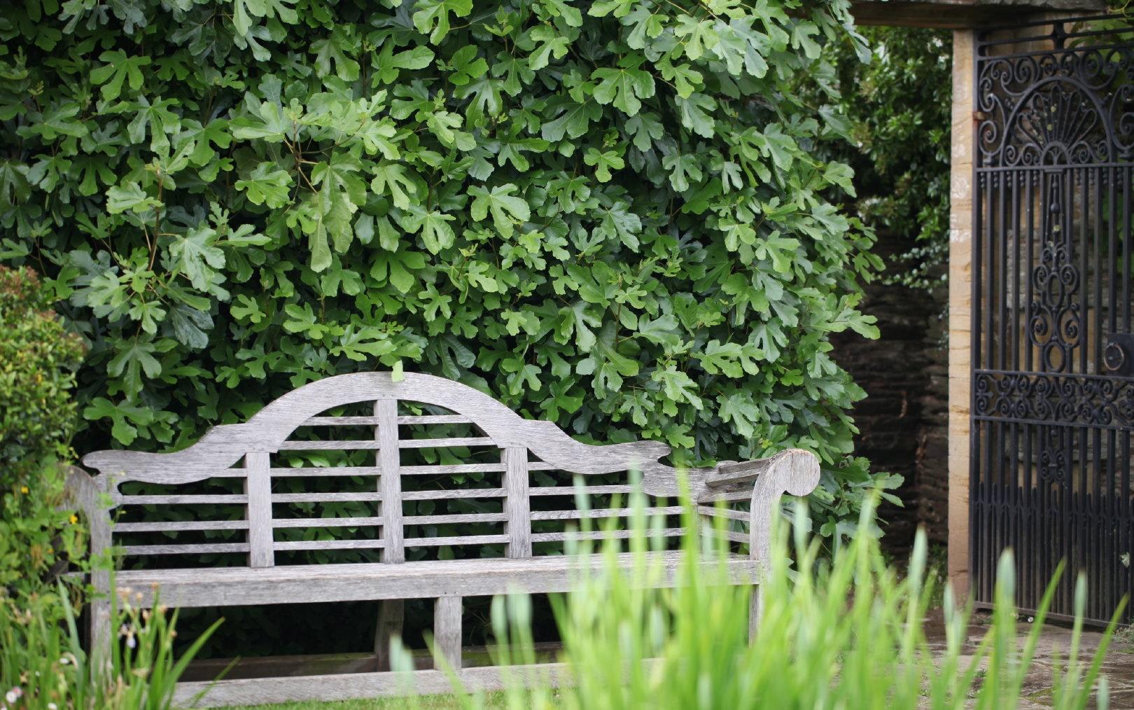 打造村舍花园的关键要素有哪些?